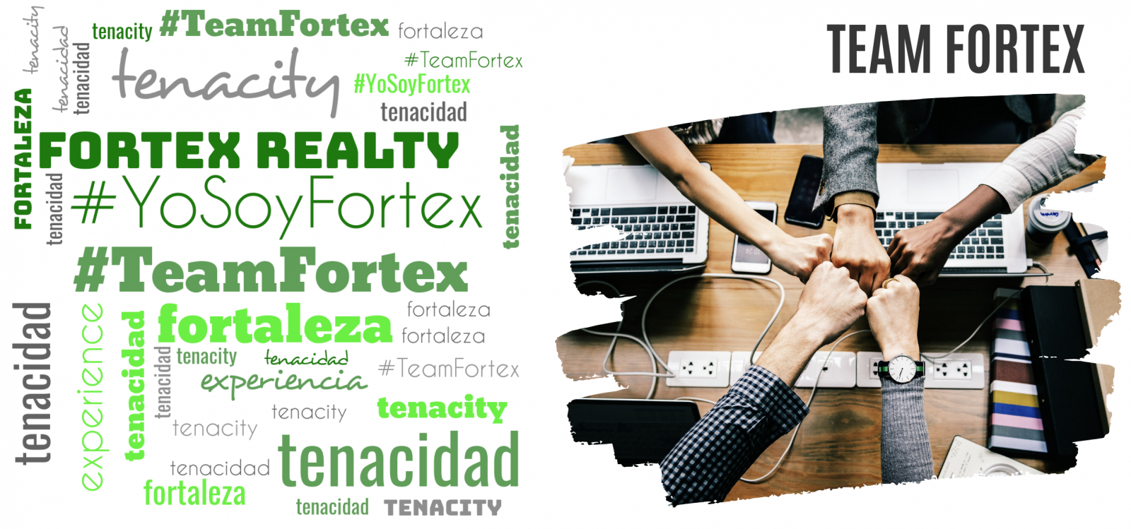 Team Fortex Realty - Join us