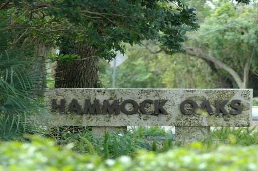 Hammock Oaks